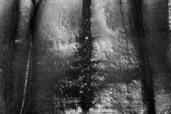 varange-falaise